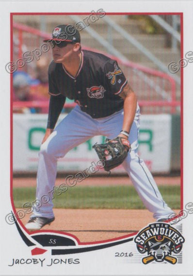2016 Erie SeaWolves Team Set