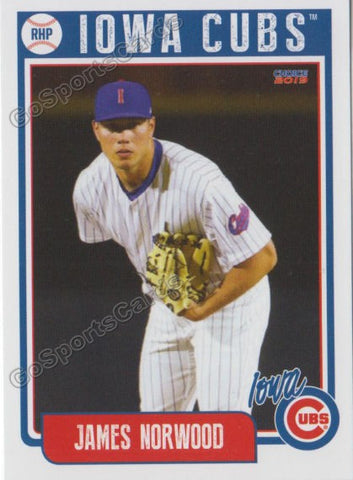 2019 Iowa Cubs James Norwood
