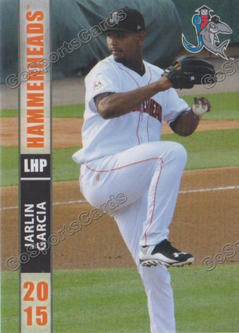2015 Jupiter Hammerheads Team Set