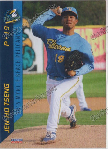 2015 Myrtle Beach Pelicans Team Set