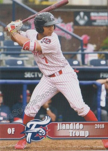 2018 Reading Fightin Phils Jiandido Tromp