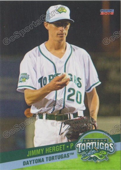 2016 Daytona Tortugas Team Set