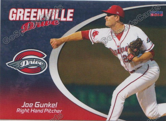 2014 Greenville Drive Team Set