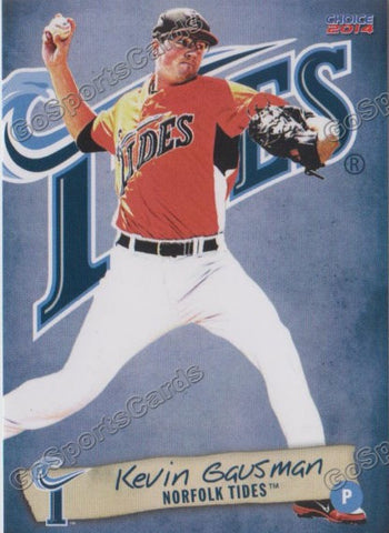 2014 Norfolk Tides Team Set