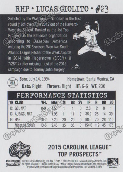 2015 Carolina League Top Prospect Lucas Giolito  Back of Card