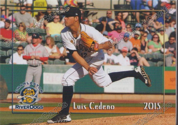 2015 Charleston Riverdogs Luis Cedeno