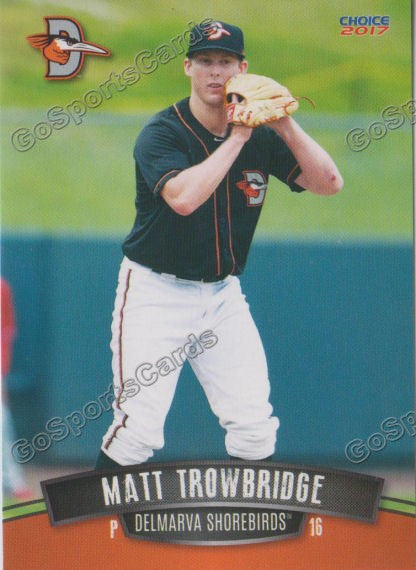 2017 Delmarva Shorebirds Matt Trowbridge