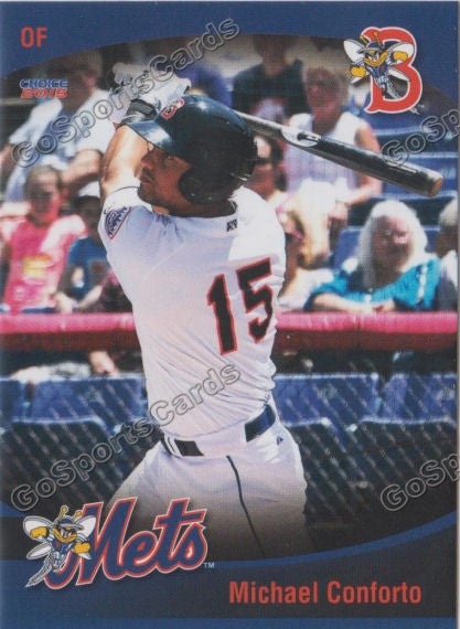2015 Binghamton Mets Team Set