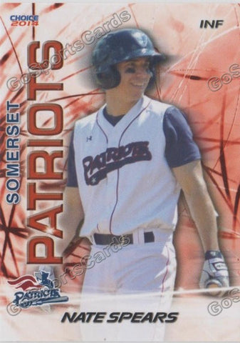 2014 Somerset Pariots Team Set