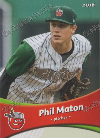 2016 Fort Wayne TinCaps Team Set