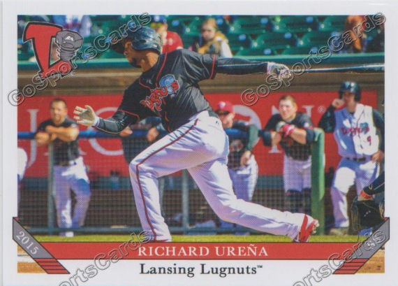 2015 Lansing Lugnuts Team Set
