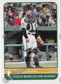 2012 South Bend Silver Hawks Roidany Aguila