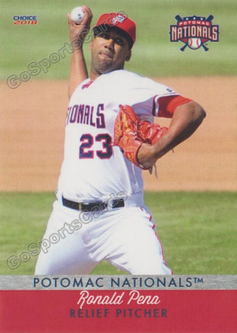 2018 Potomac Nationals Ronald Pena