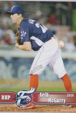 2018 Reading Fightin Phils Seth McGarry