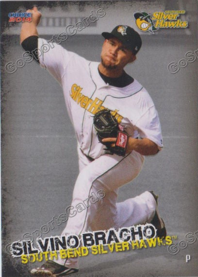 2014 South Bends Silver Hawks Team Set