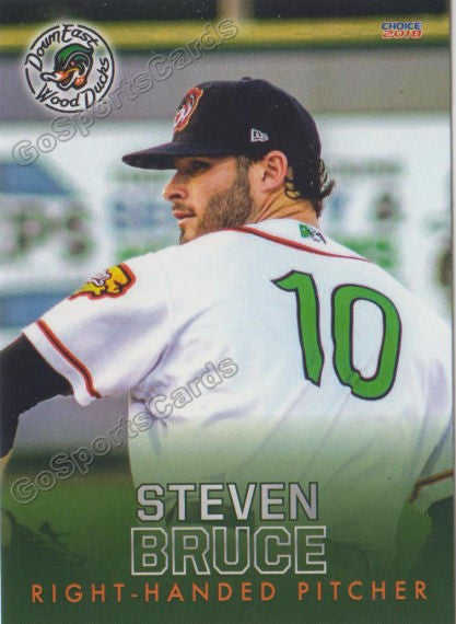 2018 Down East Wood Ducks Steven Bruce