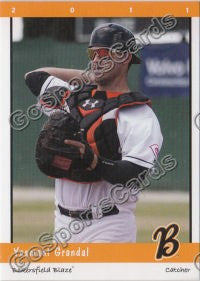 2011 Bakersfield Blaze Team Set