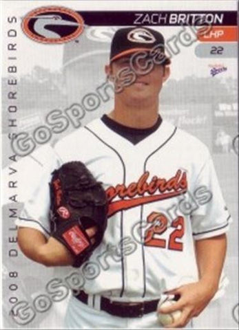 2008 Delmarva Shorebirds Team Set