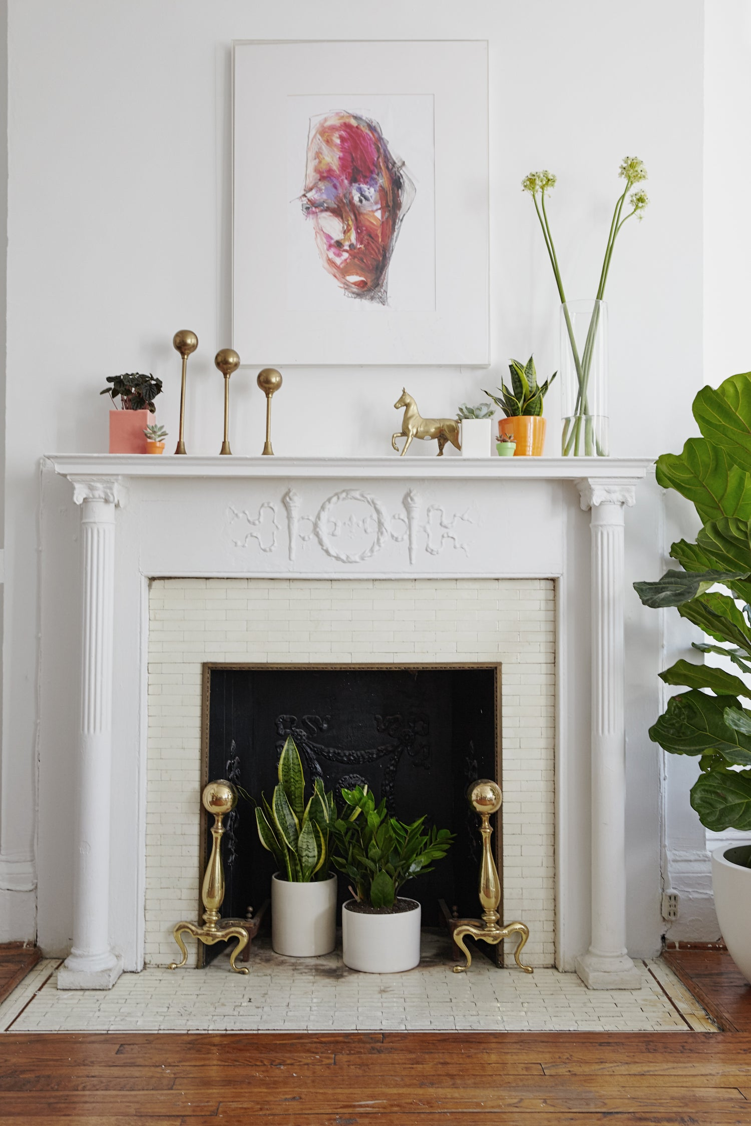 Happy at Home: A Houseplant Care Guide | Schoolhouse
