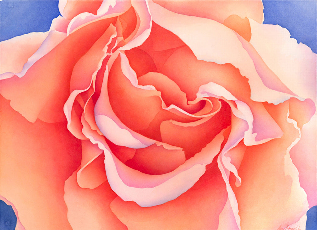 Unfurling Rose Print
