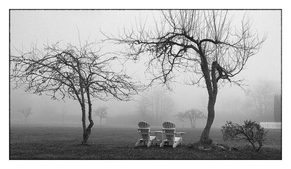 Two Chairs in the Fog