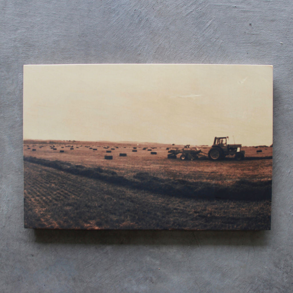 Rustic print Field of Hay - Unlimited 83