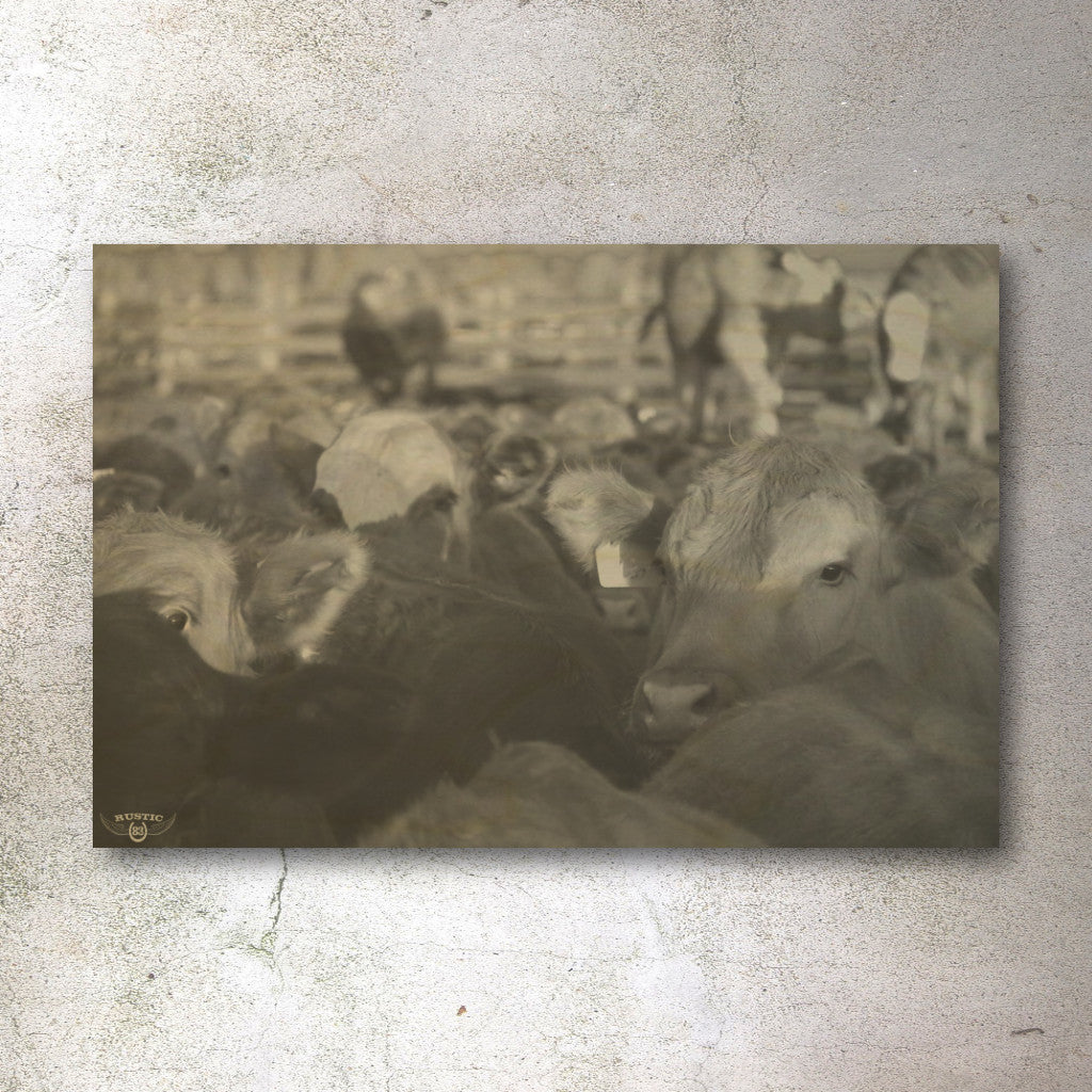 Rustic print of cattle playing - Unlimited 83