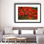 Poppies - Photography Framed Art Print