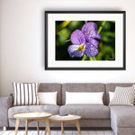 Flower - Photography Framed Art Print