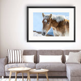 Horse - Photography Framed Art Print