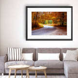 Bee - Photography Framed Art Print