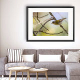 Bird, Photography Framed Art Print by Raina Sind