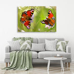 Butterflies - Photography Canvas Art Print