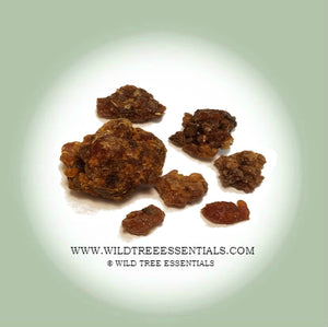 Arab Myrrh Resin - Wild Tree Essentials