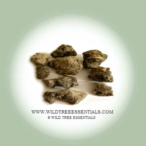 Black Neglecta Frankincense (Boswellia Neglecta) - Wild Tree Essentials