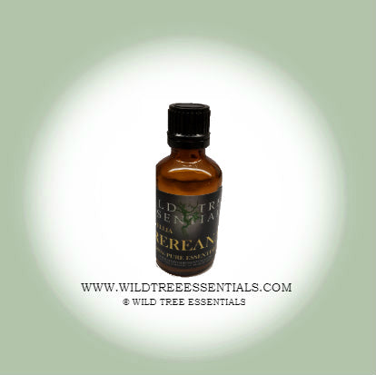 100% Pure Boswellia Frereana (Maydi) Frankincense Oil - Wild Tree Essentials