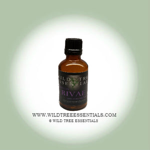 100% Pure Boswellia Rivae Frankincense Essential Oil - Wild Tree Essentials