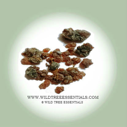 Commiphora Kua Myrrh (Rare) - Imported from the Island of Socotra - Wild Tree Essentials