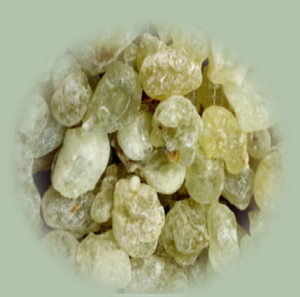 Lemon-Lime Green Frankincense (Boswellia Sacra)