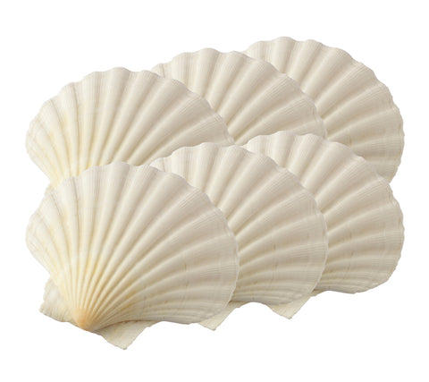 Scallop Baking Shells, Small