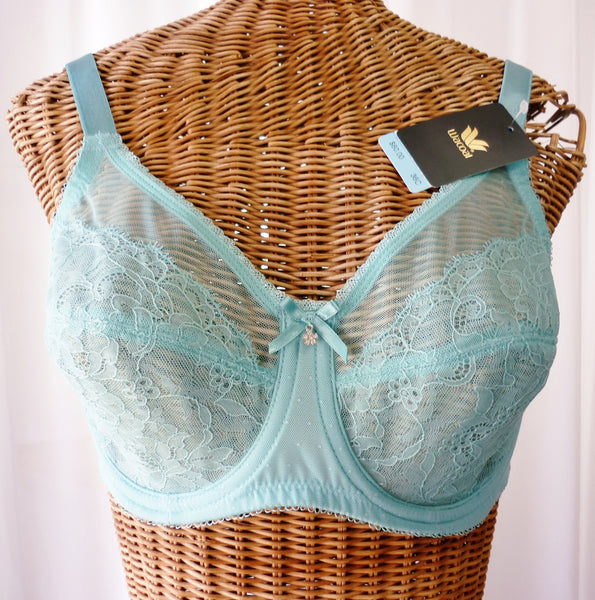 Wacoal Aqua Sheer Bra Rhinestone Center New With Tags 36C - The Wicker Form - 2