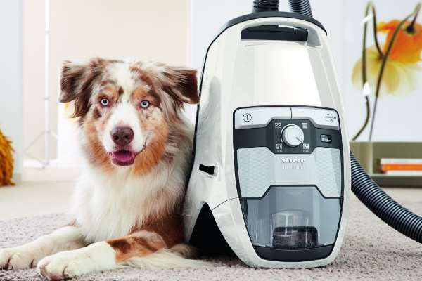 Miele CX-1 Blizzard - Cat & Dog