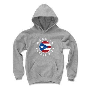 Puerto Rico Kids Youth Hoodie | 500 LEVEL
