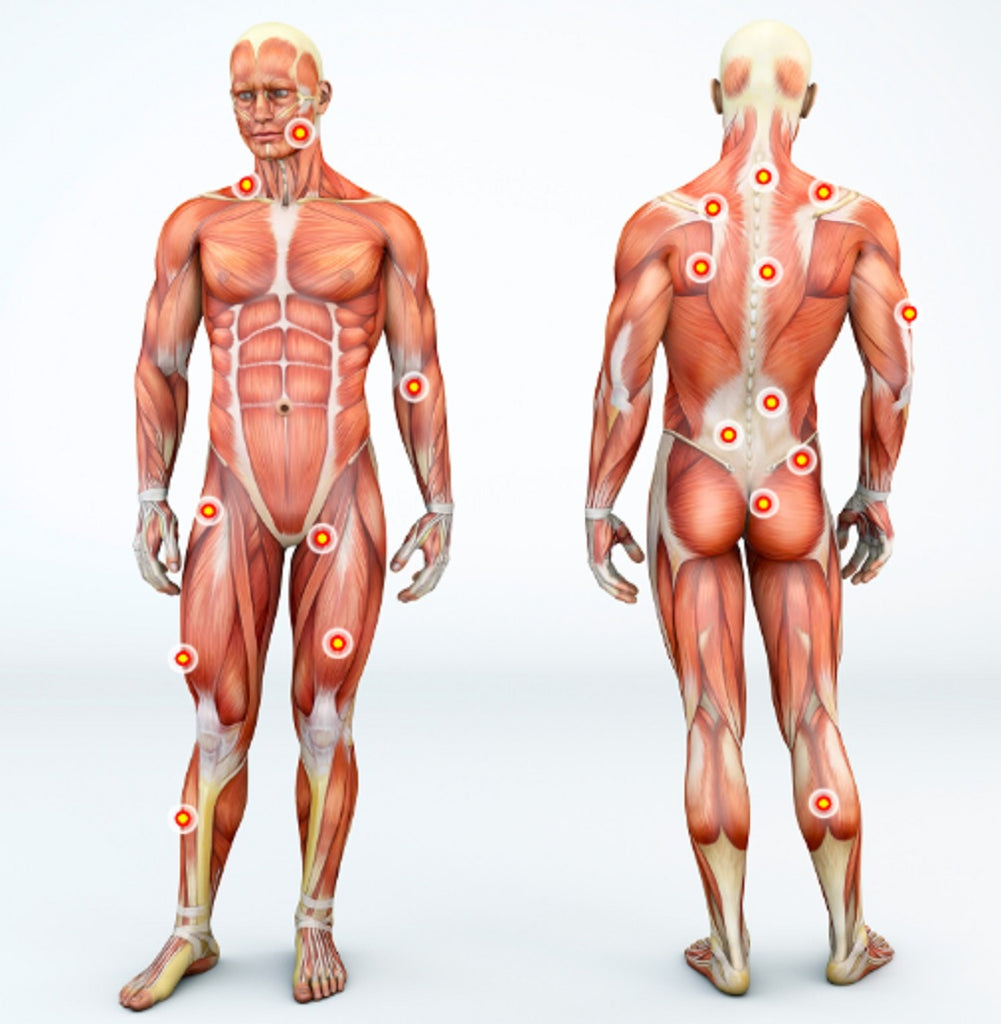 Keep Your Fascia Healthy