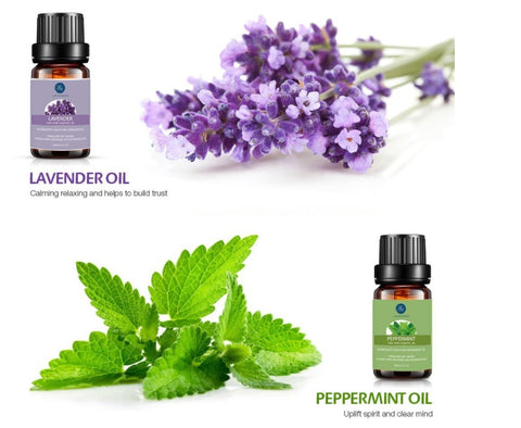 Stress: Causes, Effects, and Management - Lagunamoon Essential Oils