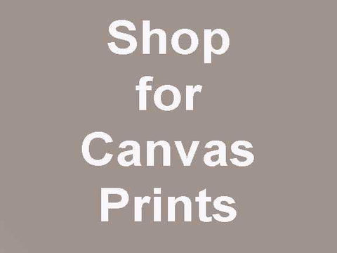 Shop Gallery 1870 Prints