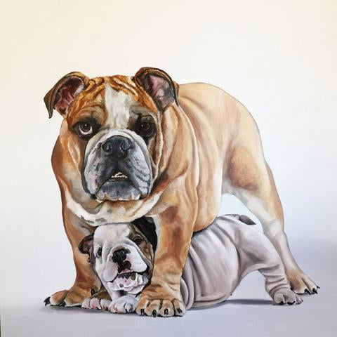 Pet Portraits by CHANDLER