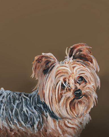 Yorkie - by renowned Napa Valley artist Gail Chandler.