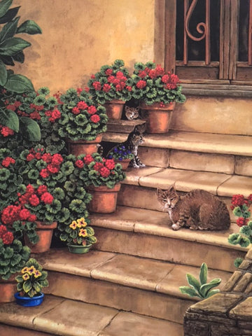 Feral Cats of Tuscany