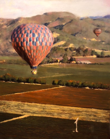 Napa Balloons Over Vineyard